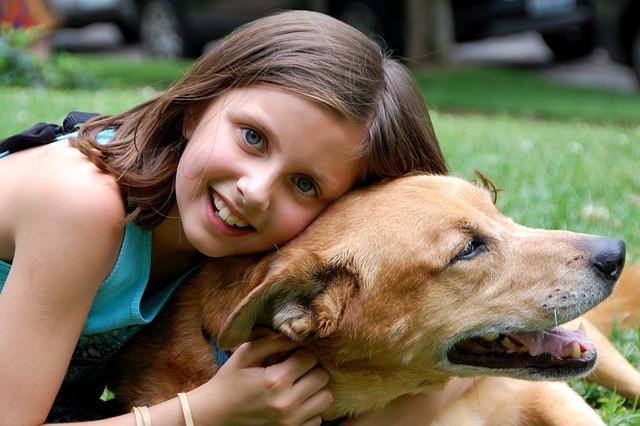 Breeds Dog 2 1