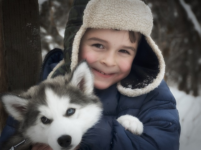 Breeds Dog 3