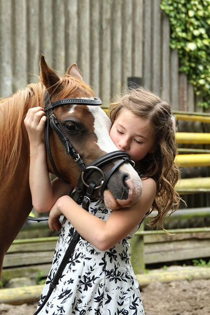 pony and little girl